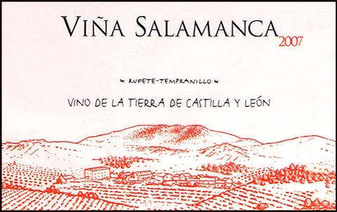 Bodegas-Valdeaguila_Vina-Salamanca-2007